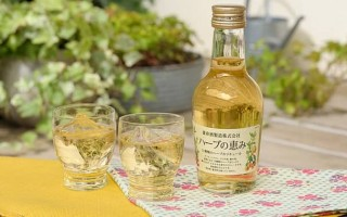 Обзор японского сливового вина