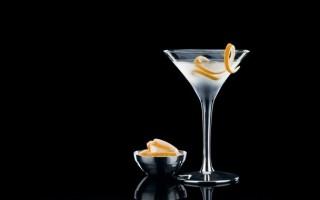 Рецепты приготовления Мартини с водкой