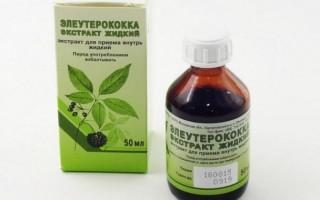 Польза и вред настойки элеутерококка