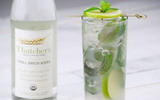 Как приготовить алкогольный мохито с водкой в домашних условиях по пошаговому рецепту