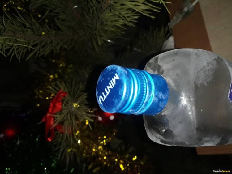 чем отличается финская водка минту