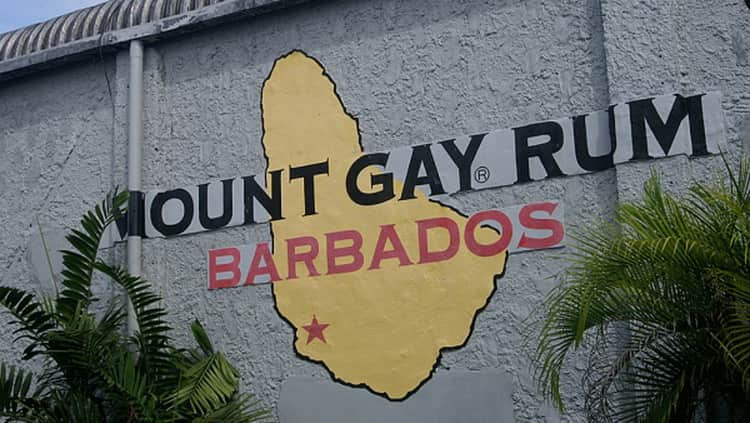 Ром Mount Gay и его особенности