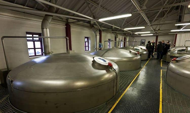 Важный момент в технологии производства виски это ферментация сусла.