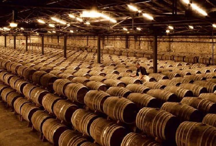 Компания производит коньяк из отборных сортов винограда.