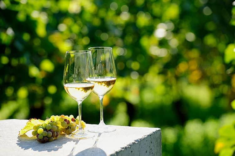 Как выбрать вино алиготе крымское