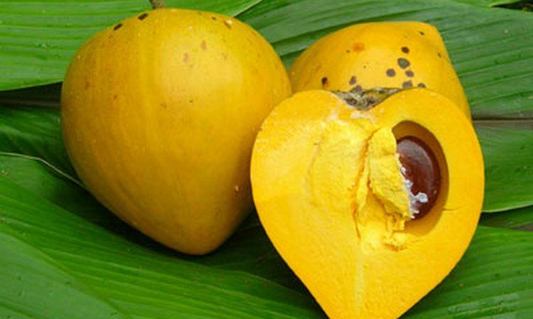 Ликер Амарула делают вот из такого экзотического фрукта, марулы.