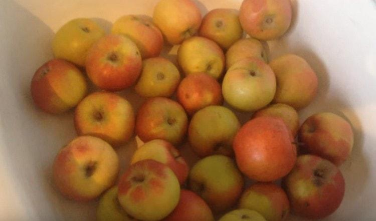А вот рецепт браги для питья из яблок.
