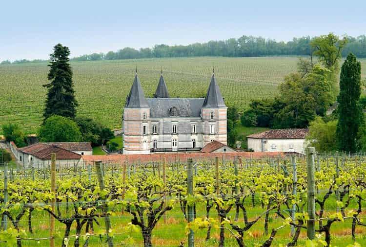 Коньяк Фрапен производится из винограда, вырощенного в самых плодородных регионах Франции на собственных виноградниках производителя.