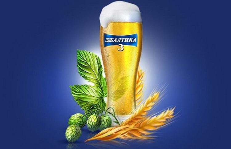 Балтика пиво и его особенности