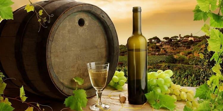 Производство вина асти