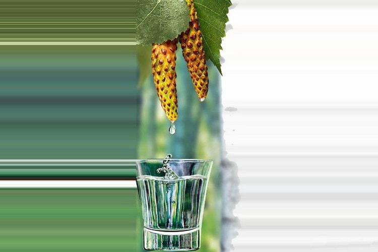 Виды водки на березовых бруньках