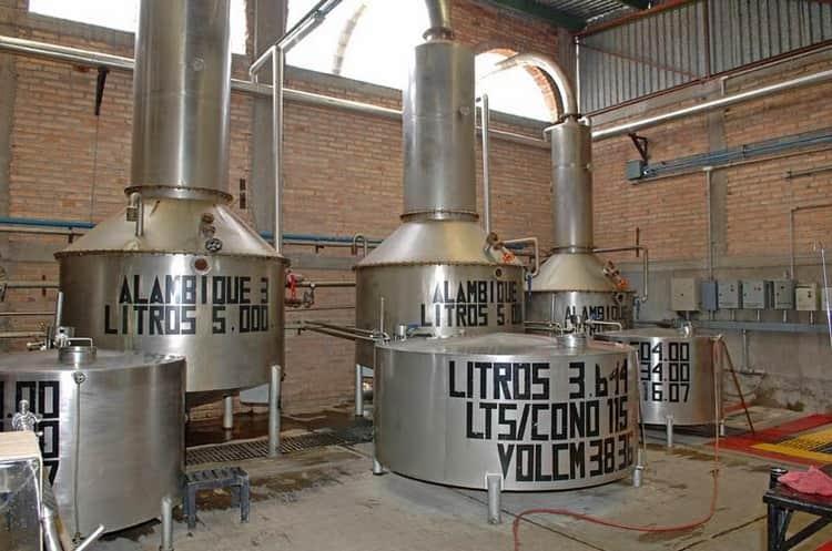 Затем происходит ферментация и фильтрация напитка.