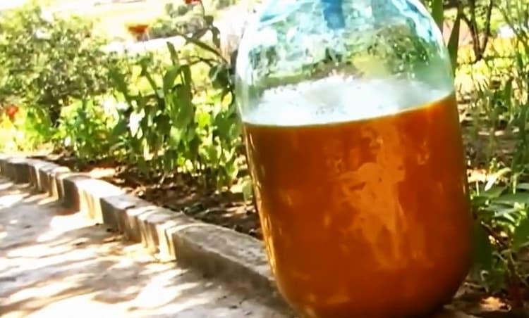 Для приготовления абрикосового вина выложите ингредиенты в бутылку