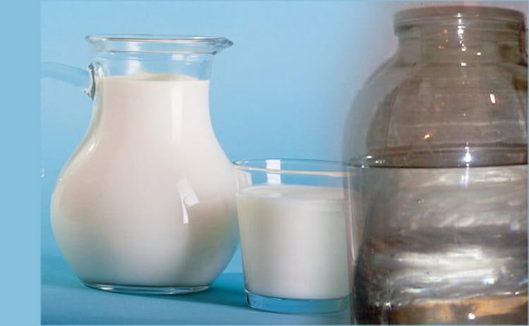 Как произвести очистку чачи молоком в домашних условиях