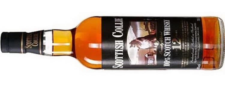 Виды виски скоттиш колли