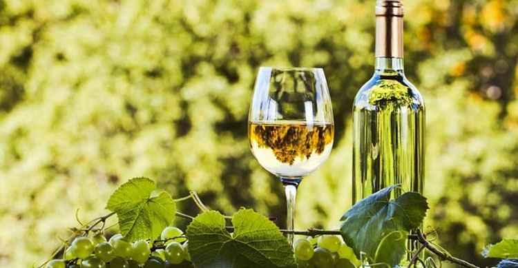 Белое вино дигустация