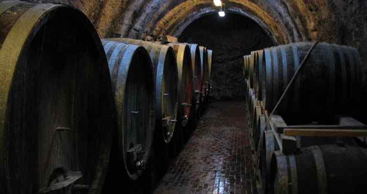 биодинамическое вино порядок сертификации