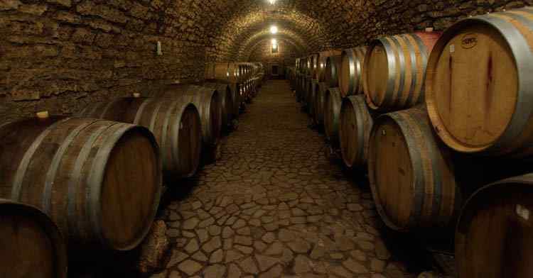 История германских вин