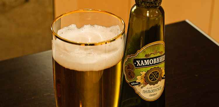 Как подать Пиво Хамовники