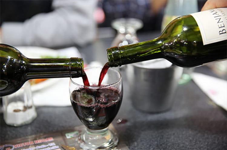 вина аргентины и их особенности