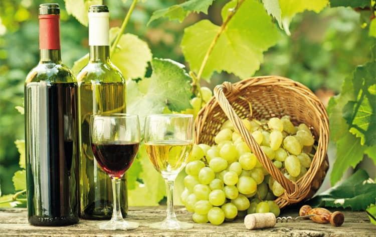 Вкус вина айсвайн австрия