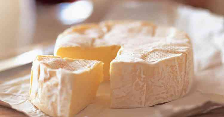 Сыр камамбер как закуска к вину