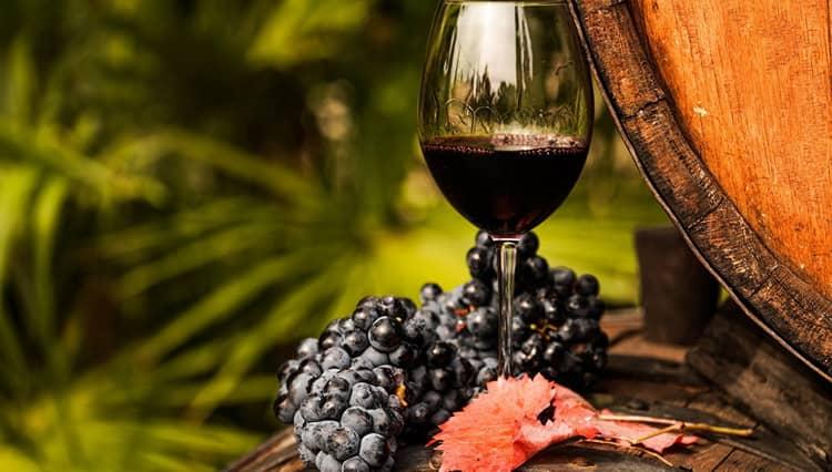 История виноделие тоскане