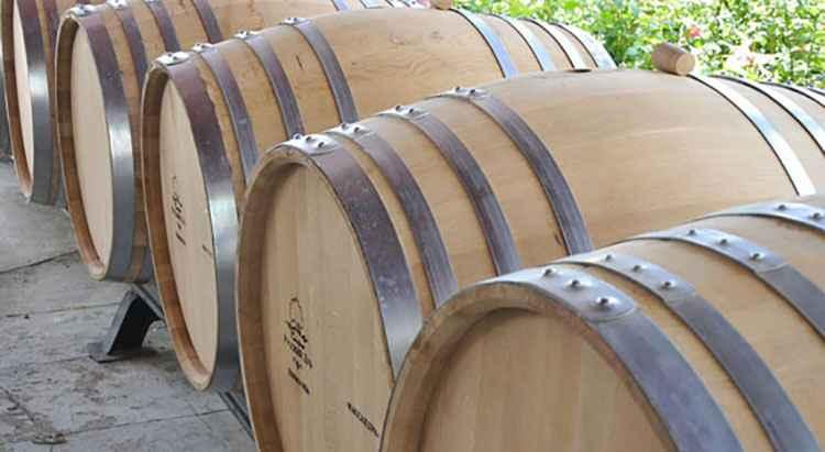 Вино Фанагория история как все начиналось