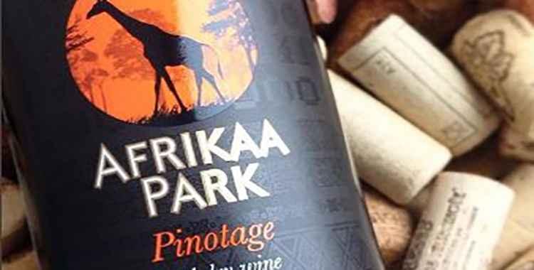 Вино Пинотаж и его особенности