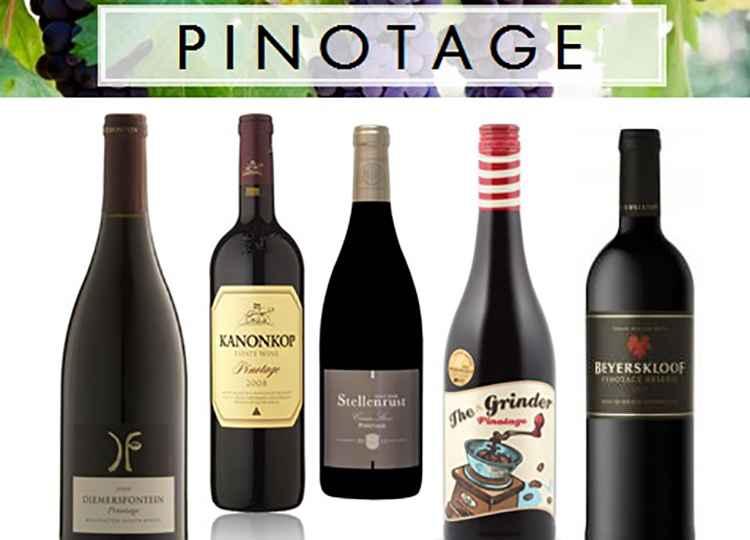 Виды Вино Пинотаж