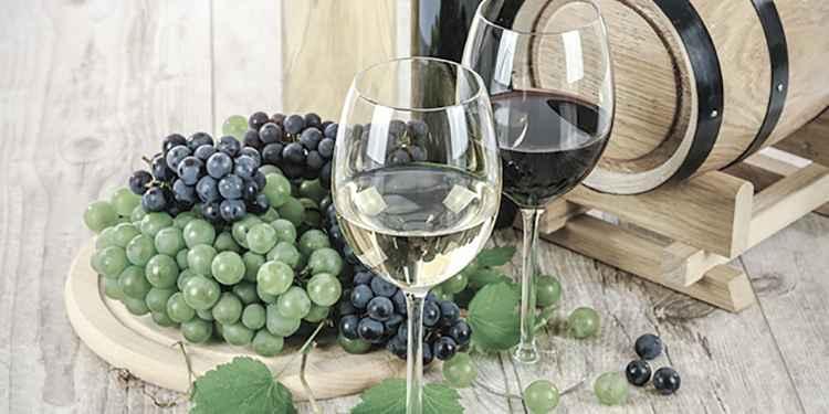 Вино Пинотаж и его история