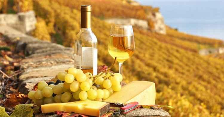 Вино Шираз история происхождения напитка