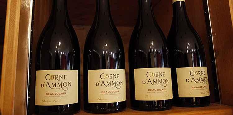 Вино божоле как выбрать оригинал