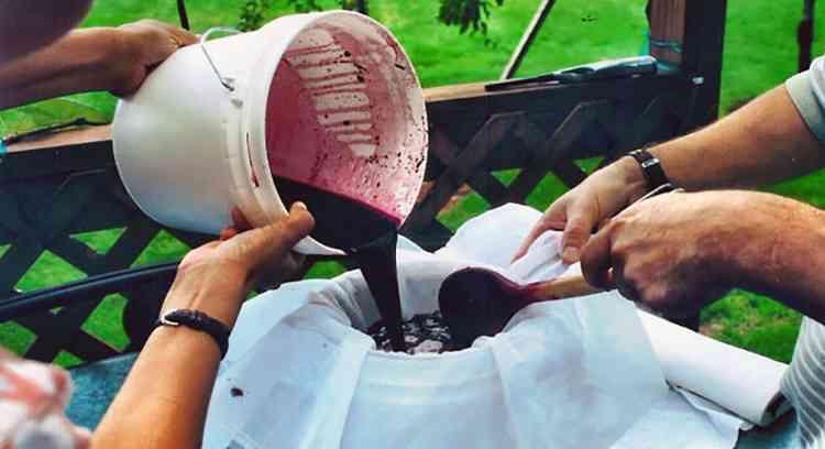 Вино из черники используем марлевый фильтр в процессе приготовления