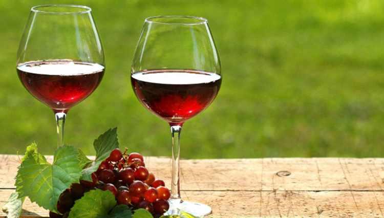 Вино из калины рецепт