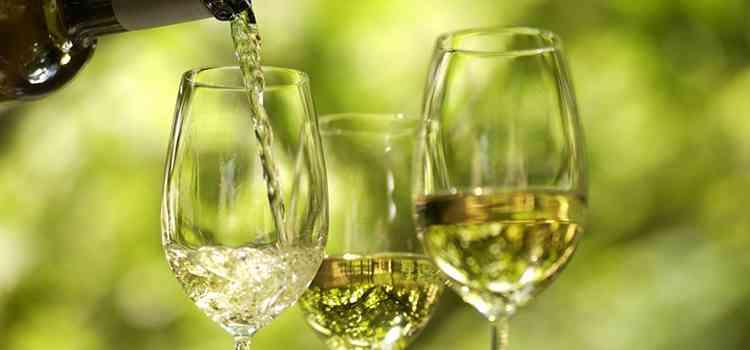 Вино из винограда Изабелла рецепт приготовления белого вина
