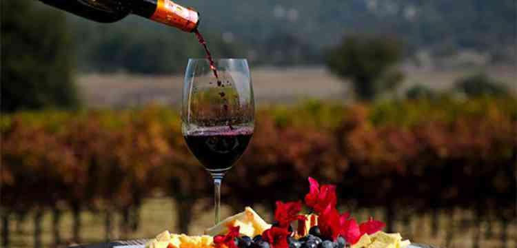 Вино македонии особенности