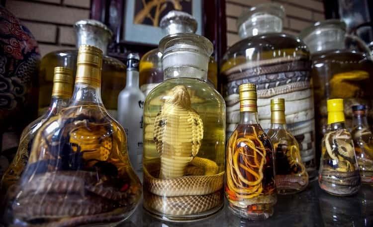 Водка со змеей это достаточно популярный сувенир из восточных стран.