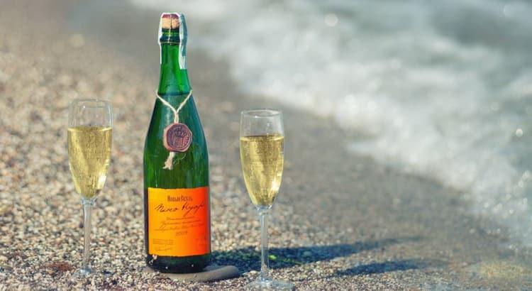 Дегустационные характеристики шампанского новый свет