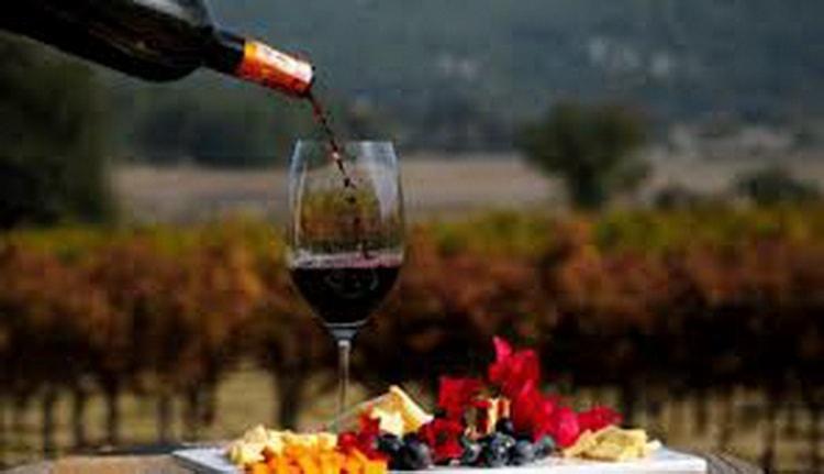 Вкус вин болгарии