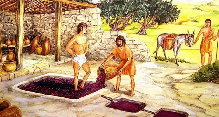 история виноделия в греции