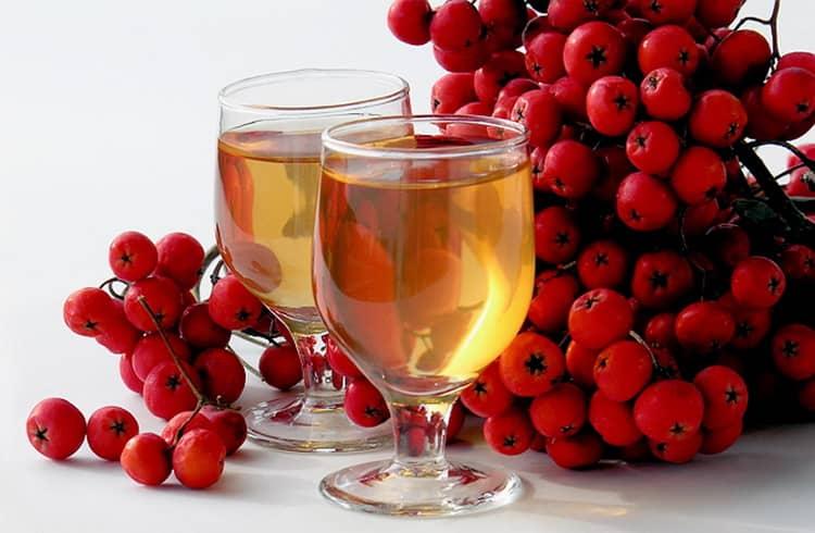 вино из красной рябины в домашних условиях простой рецепт
