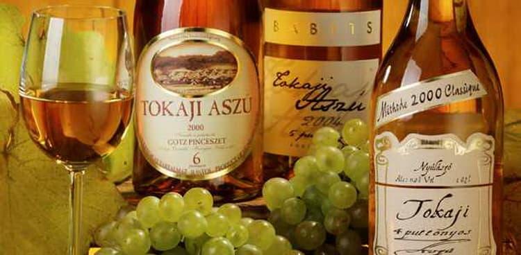 Дегустация вина токайское