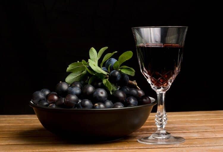 Как готовить вино из терносливы с косточками в домашних условиях по простому рецепту