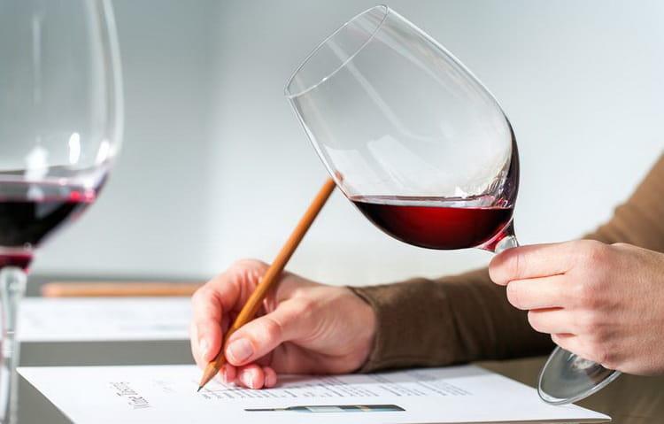 Особенности итальянских вин