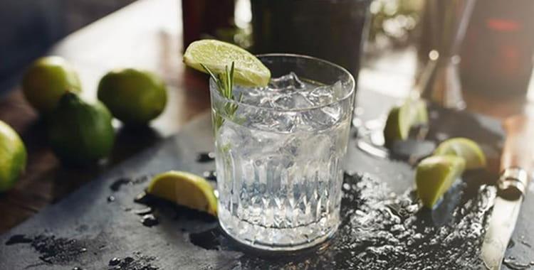 Как сделать джин без джин-корзины, можжевельник для джина