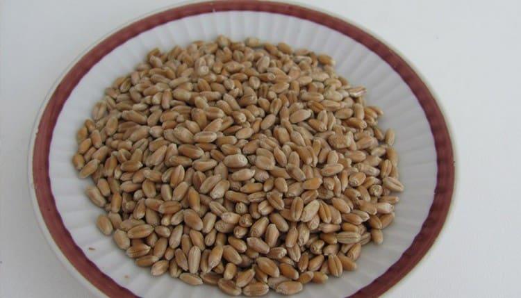 далее следует просушка зерна.