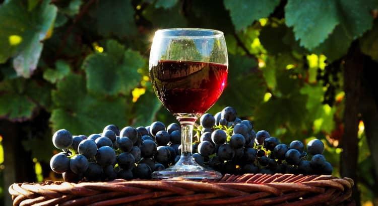 как сделать вино с винограда в домашних условиях