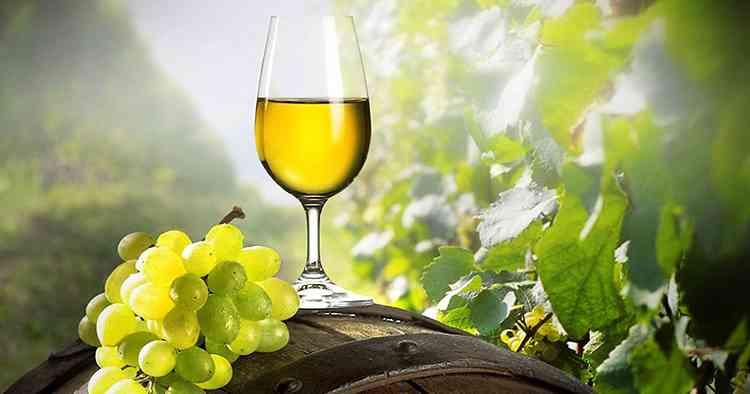 зеленое вино украсив ваш вечер