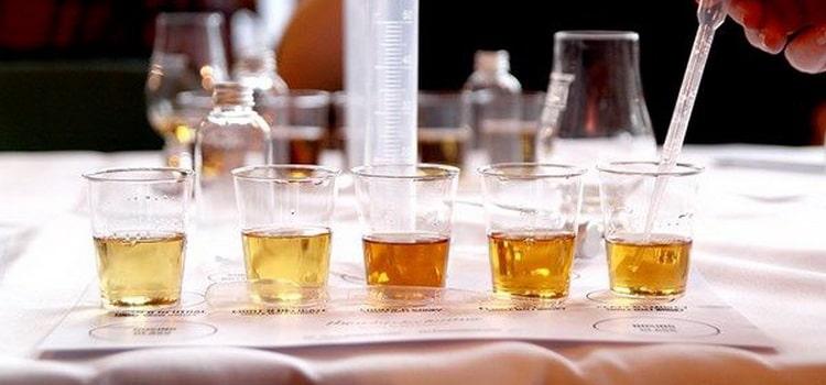 какой виски лучше и чем отличаются односолодовый или купажированный